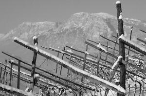 Montagne nel cuore del Trentino